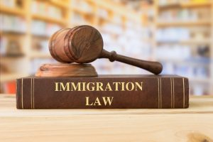Immigration law book and a gavel