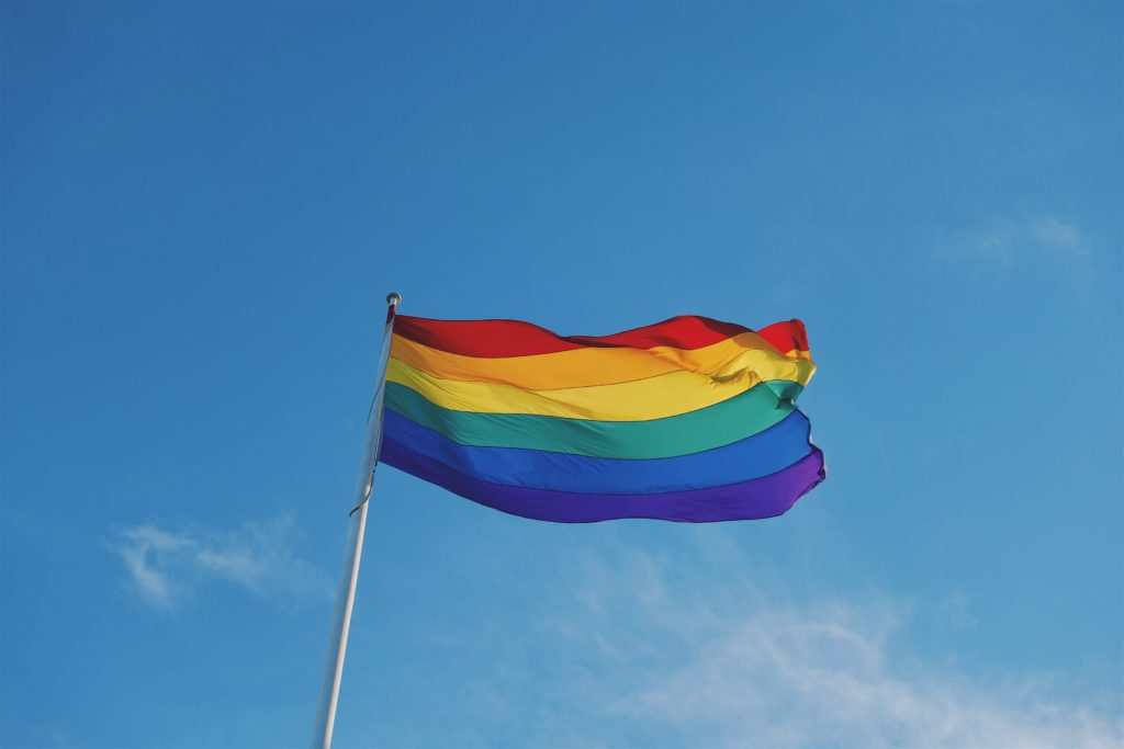 LGBT Flag Waving